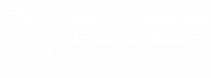 river security logo